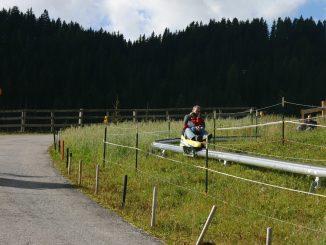 Fisser Flitzer - Einschienen - Sommerrodelbahn