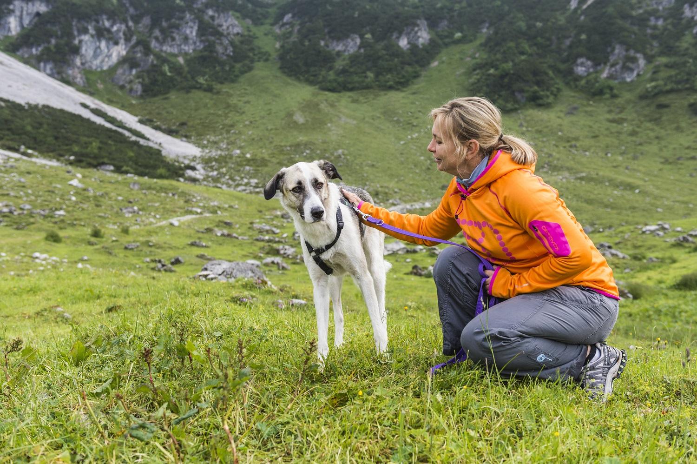 TirolWerbung_1253544-hundecoach